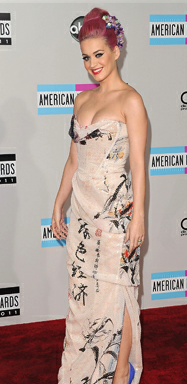 RED CARPET RECAP: 2011 AMERICAN MUSIC AWARDS